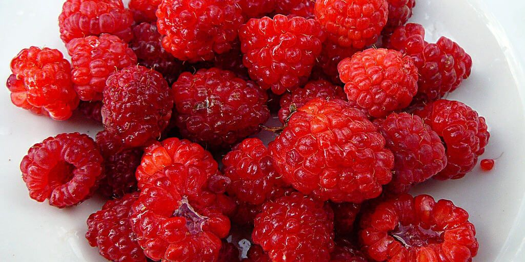 Raspberry Ketones Benefits Information