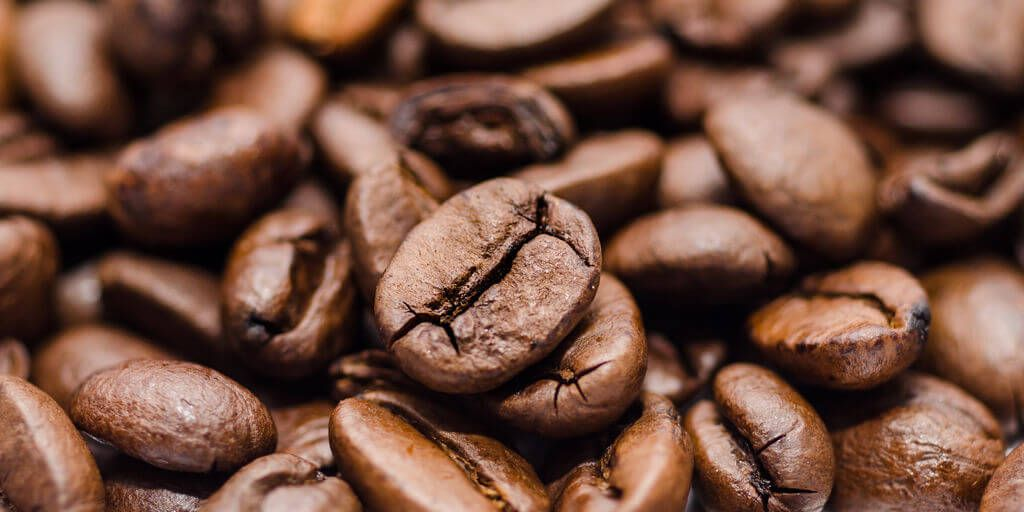 Cocoa Beans Benefits & Information