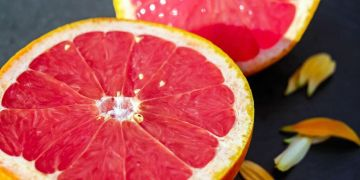 Grapefruit - Citrus × paradisi