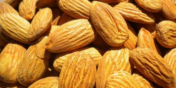 Almonds - Prunus amygdalus